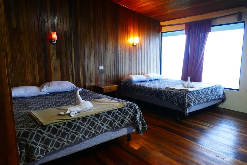 Queen size beds in the double standard room